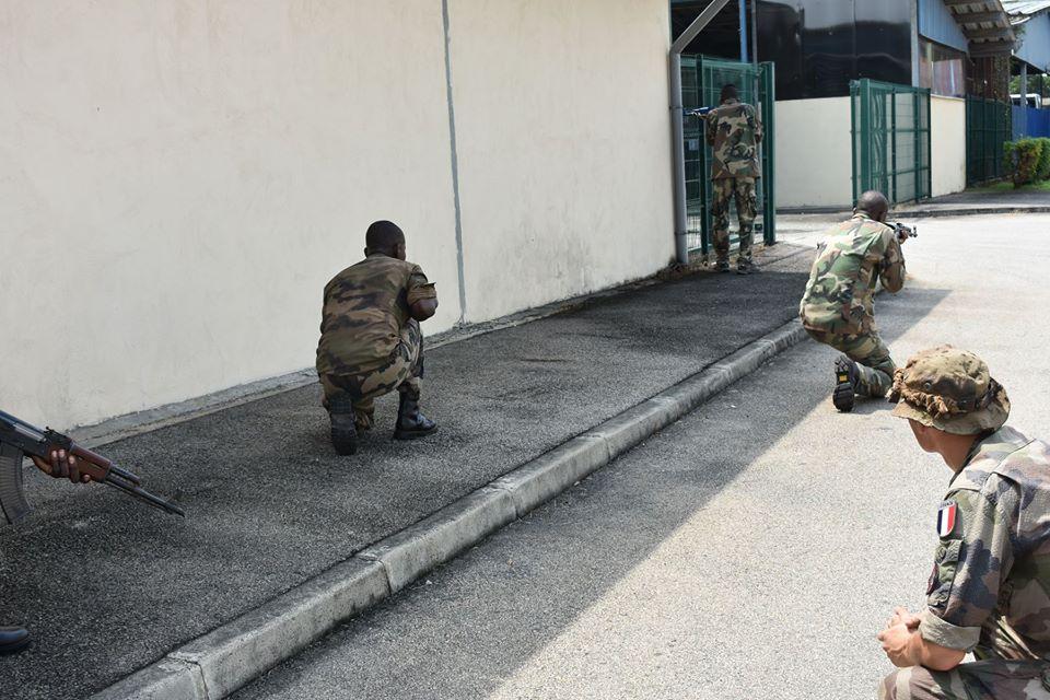 Armées de la République centrafricaine  - Page 10 _12f5a64