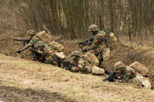 Armée Belge / Defensie van België / Belgian Army  - Page 24 _12f6519