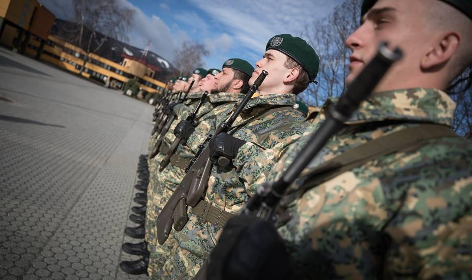 Armée autrichienne / Austrian Armed Forces / Österreichisches Bundesheer  - Page 6 _211
