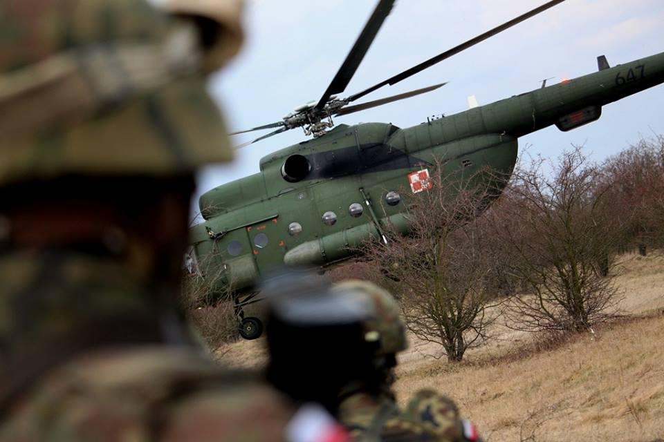 Les Forces Armées Polonaises/Polish Armed Forces - Page 25 _365