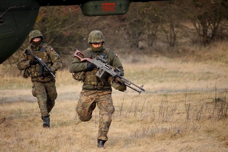 Les Forces Armées Polonaises/Polish Armed Forces - Page 25 _458
