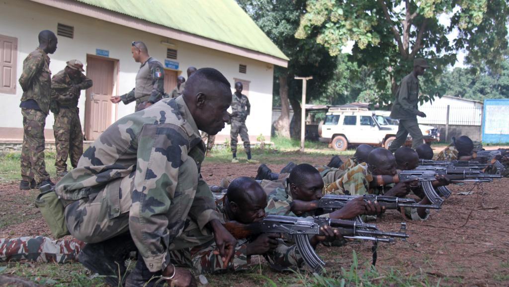Intervention militaire en Centrafrique - Opération Sangaris - Page 40 _778