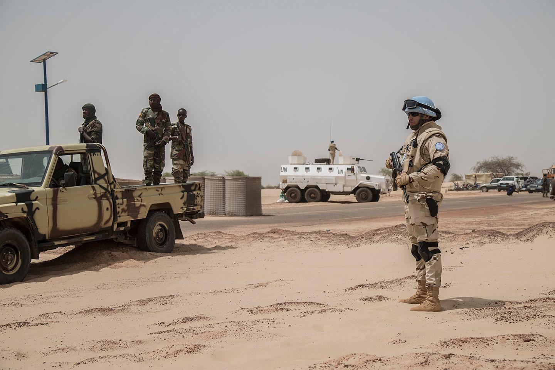Intervention militaire au Mali - Opération Serval - Page 20 _8110