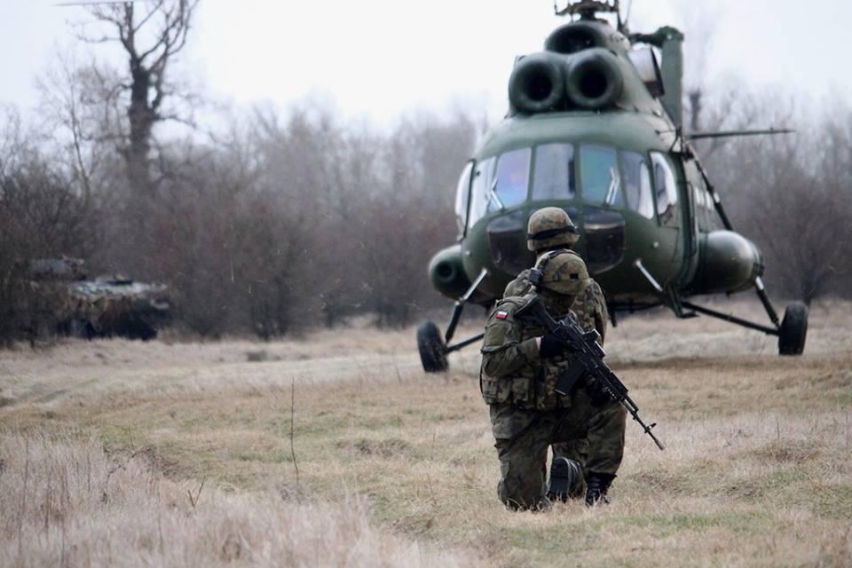 Les Forces Armées Polonaises/Polish Armed Forces - Page 25 _844