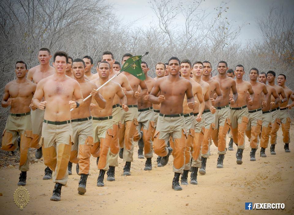 Armée Brésilienne/Brazilian Armed Forces/Forças Armadas Brasileiras - Page 34 Caatin12