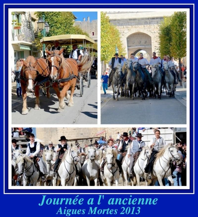 Journée a l'ancienne Aigues-Mortes ( 06/10/2013 ) _dsc5711