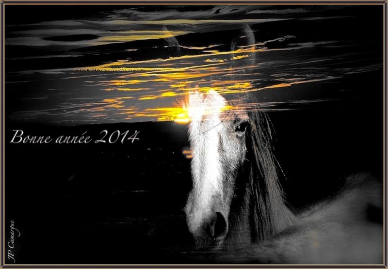 Bonne année 2014 a tous !!!!! _dsc6611