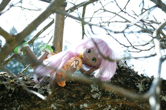 Façon Badou : mes petites merveilles (Grosse MAJ p11♥ 28.08) _mg_4314