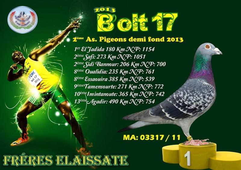 Bolt 17 Bolt_110