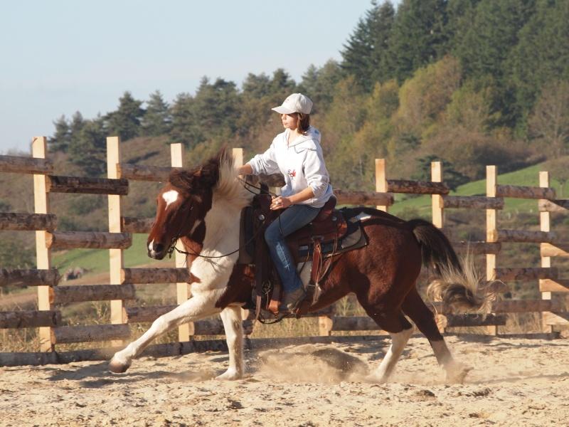 Serena Ranch, Djebelle et ses amis Pa245013