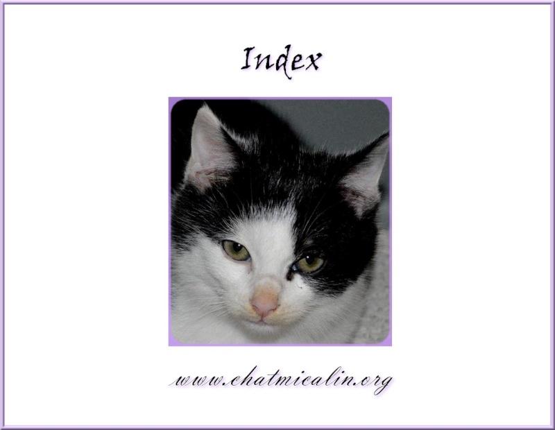 Tous nos adoptés en image Index11