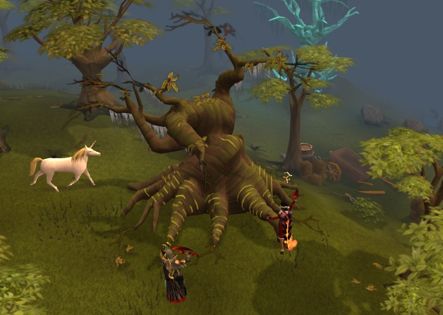 Elder tree New_bi14