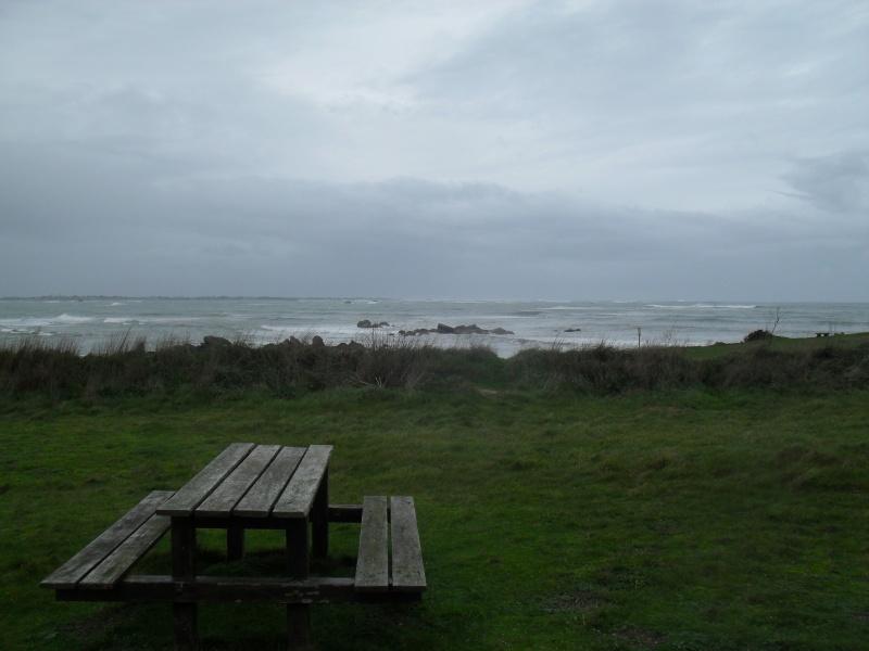 un petit café en plein vent face à la tempête... 00216