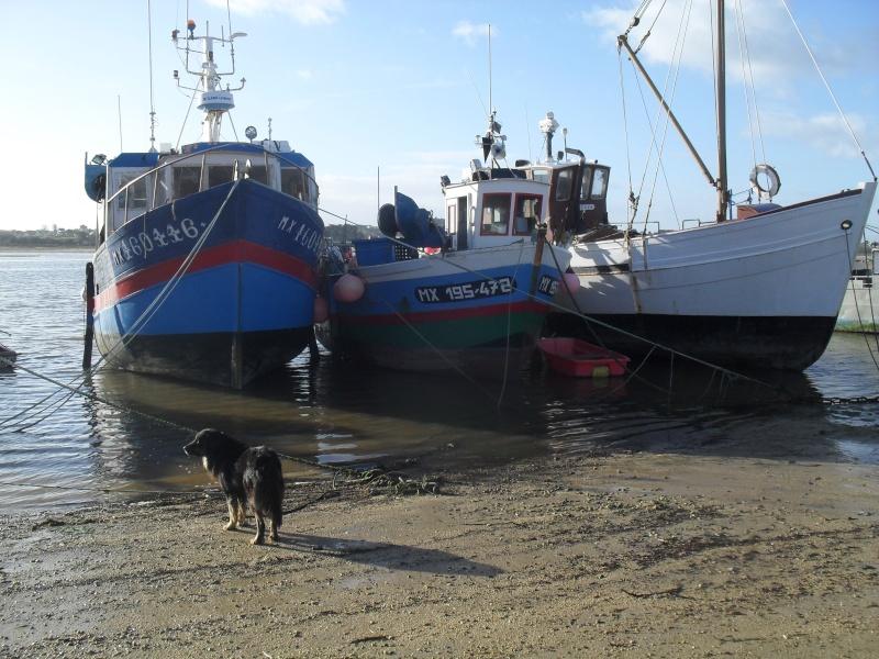 Voila , monsieur, votre bateau est réparé. 00620