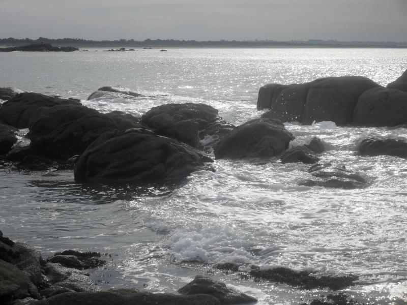 la mer était si calme ce soir ! 00621