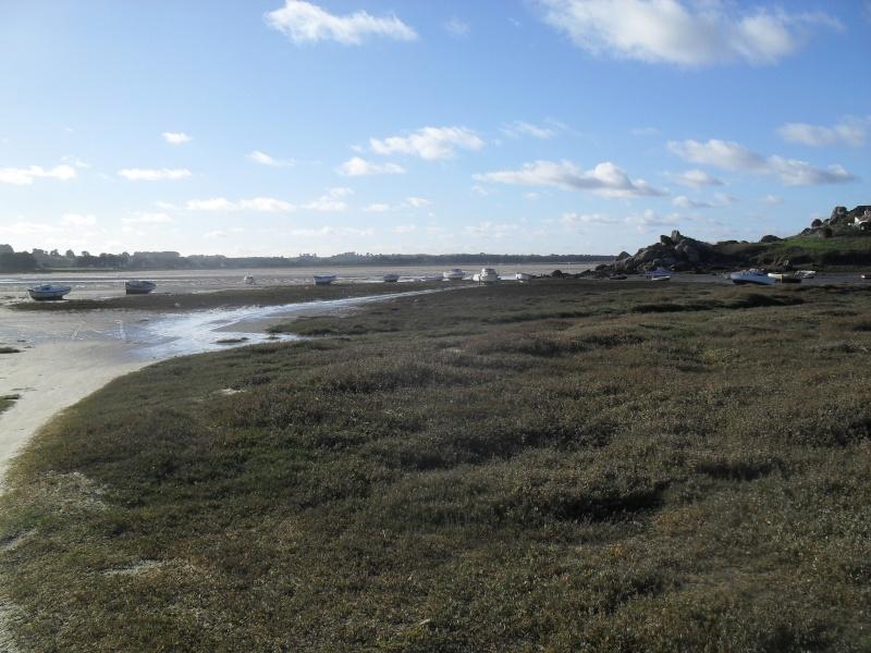 Jolie vue de la baie du kernic et des marais. 00813