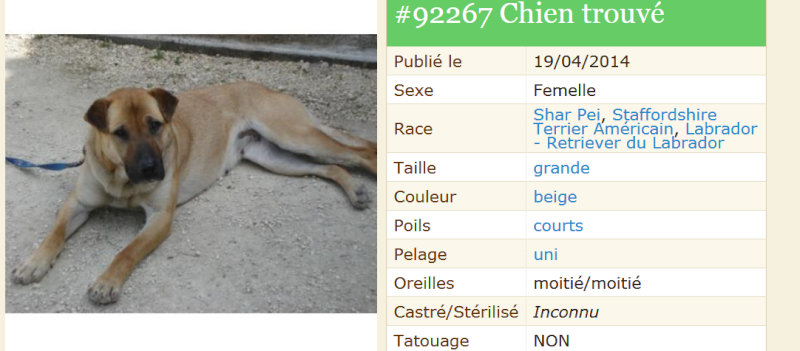 trouvée dans le 24 / la Dordogne Trouva10