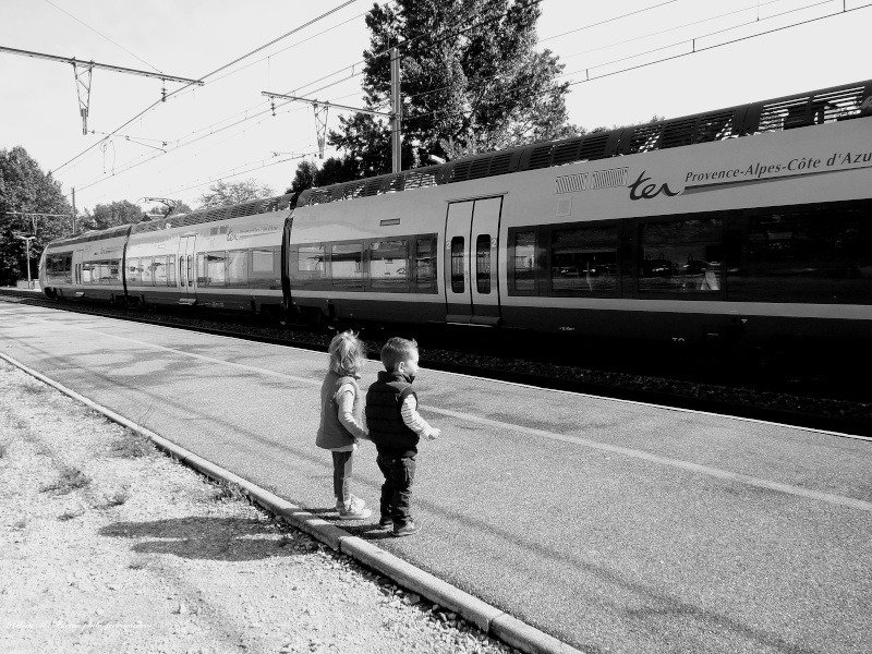 L'avenir du ferroviaire... P1050019