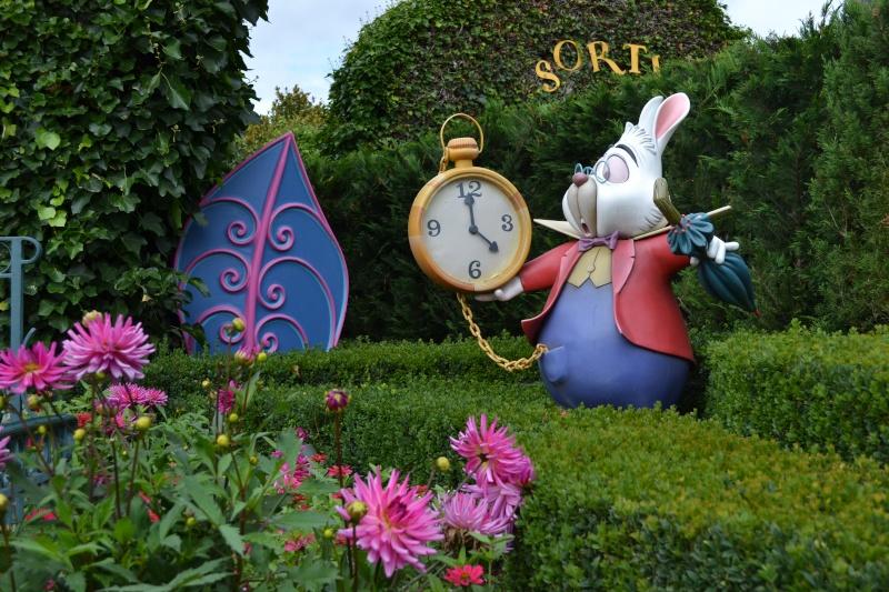 3 jours/2 nuits d'enchantements au Disneyland hôtel - Page 3 Dsc_0124