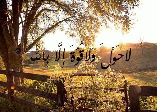 وياعسا ربي يكتب لكم في كل خطوه حسنه ☺.~.{ضع بصمتك} - صفحة 10 14243710