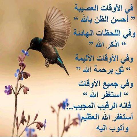 وياعسا ربي يكتب لكم في كل خطوه حسنه ☺.~.{ضع بصمتك} - صفحة 10 14522810