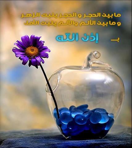 وياعسا ربي يكتب لكم في كل خطوه حسنه ☺.~.{ضع بصمتك} - صفحة 9 880_4510