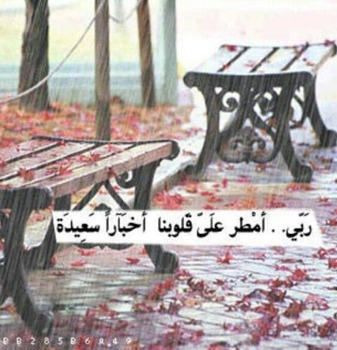 عبر ما تخليهاش في قلبك - صفحة 38 97038810