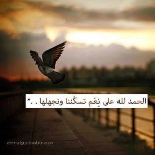 عبر ما تخليهاش في قلبك - صفحة 38 99685710