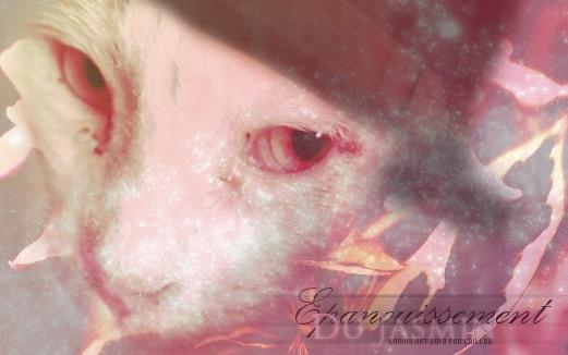 larmy art gallery ♪ Kdocai10