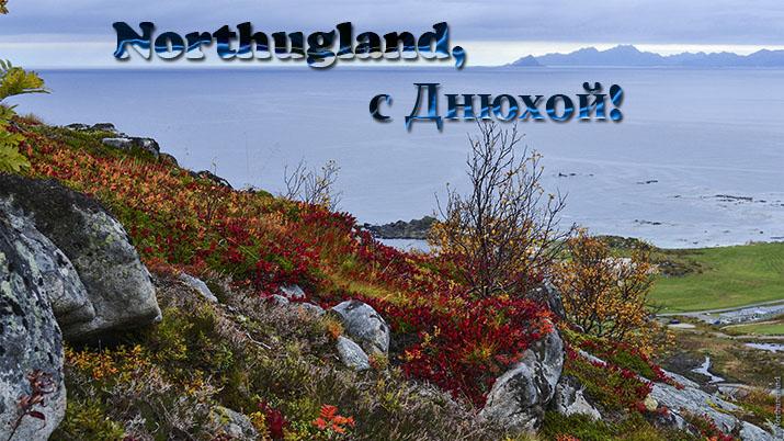 Northungland, с Днем рождения! - Страница 2 Norge_10