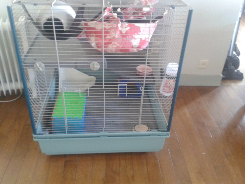 Cage Furet XL ou Furet KD 20140348