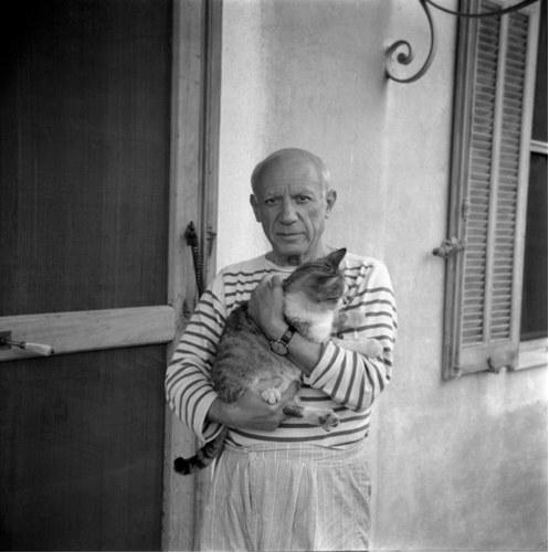 Pablo Picasso Captur34