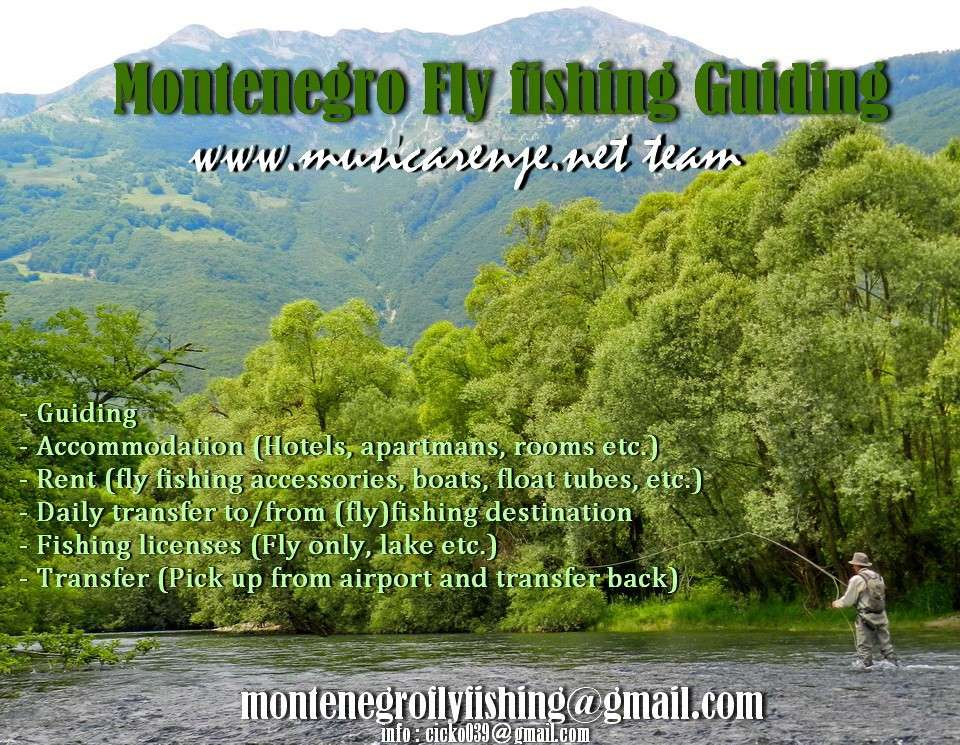 (FLY) FISHING MONTENEGRO (guiding, accommodation, etc.) - Page 2 Dscn8324