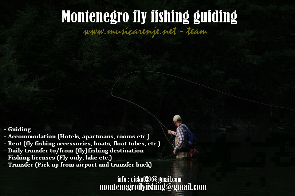 (FLY) FISHING MONTENEGRO (guiding, accommodation, etc.) - Page 2 Pocetn10