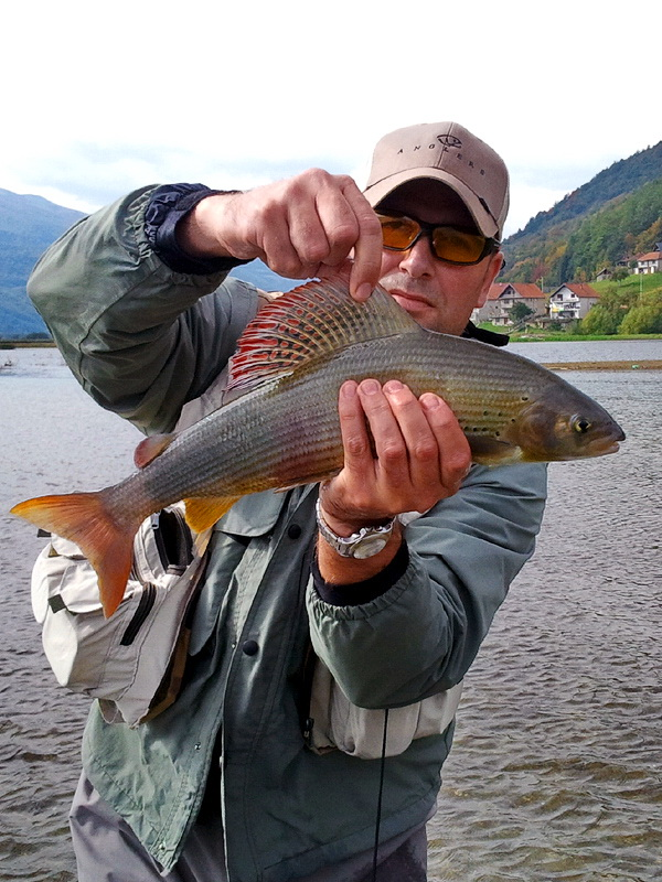 (FLY) FISHING MONTENEGRO (guiding, accommodation, etc.) - Page 2 Sasa_s10