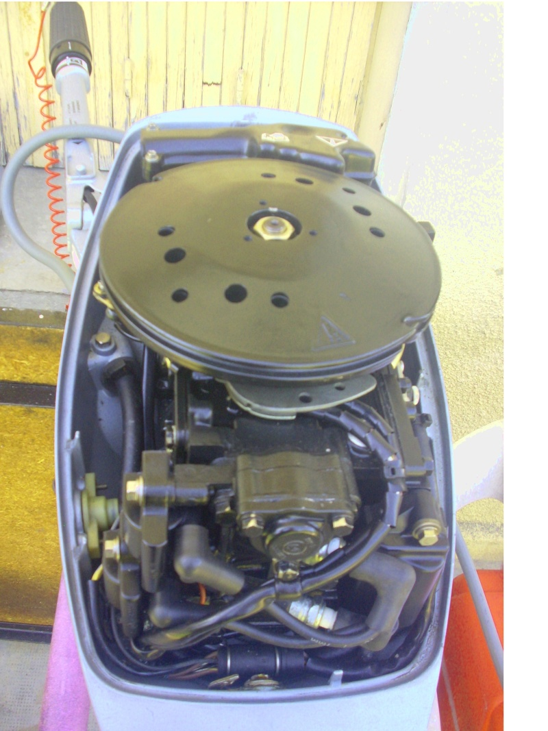 moteur thermique 9.9ch evinrude Dsci0020