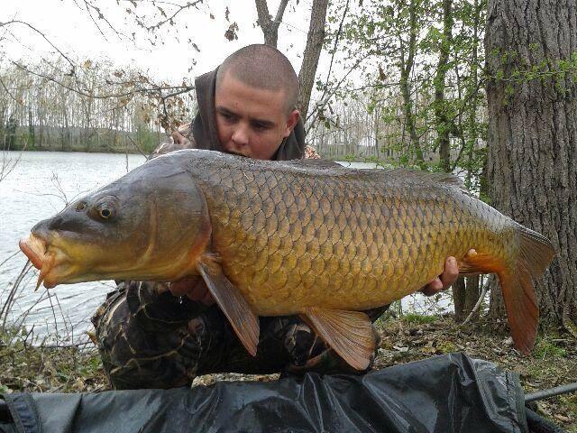 Les fishs pris au Domaine de la Longère 10156810