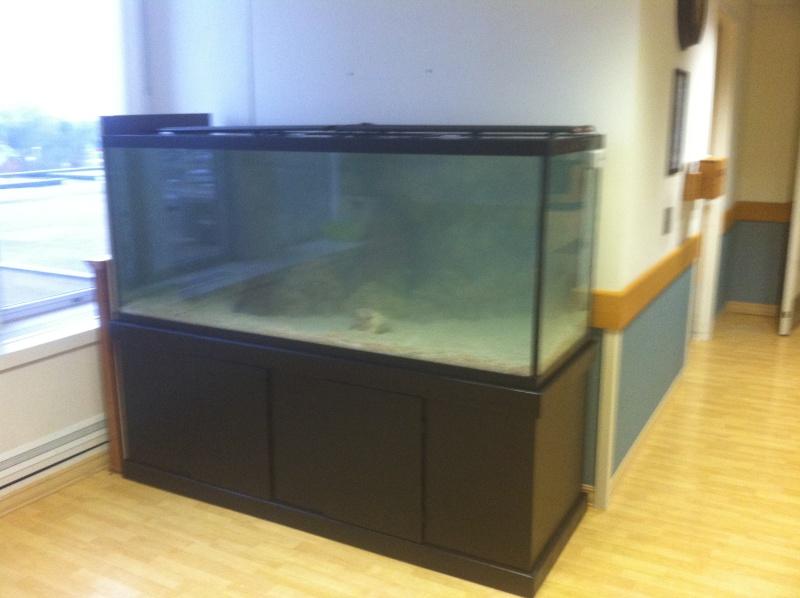 New tank at the hospital  Img_0310
