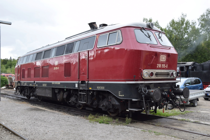 Die V160-Familie, Baureihe 210-219 der DB Dsc_0022