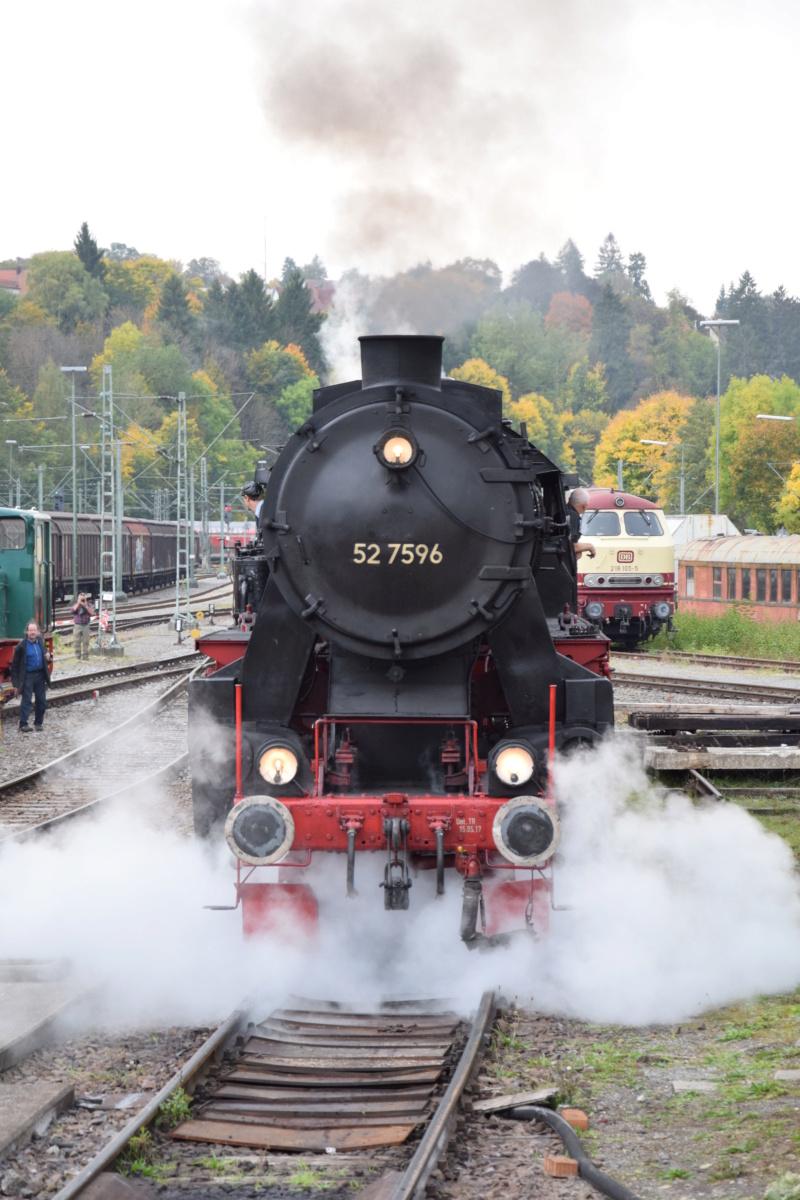 52 7596 der Eisenbahnfreunde Zollernbahn - Seite 2 Dsc_1010