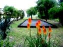 Location gîte de vacances bord de rivière Marais Poitevin, 85450 La-Taillée (Vendée) Juille10