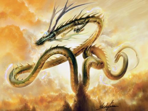 Dragón Radiante Dragon14
