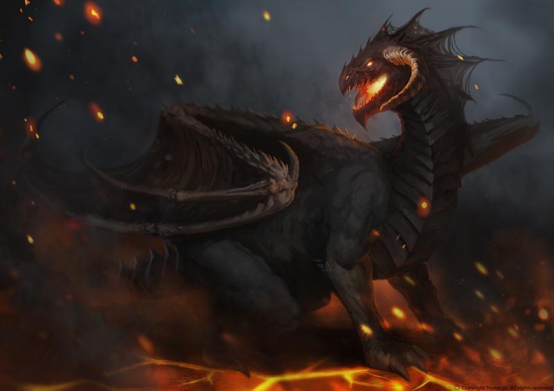 Dragón Sombrío  Dragon15