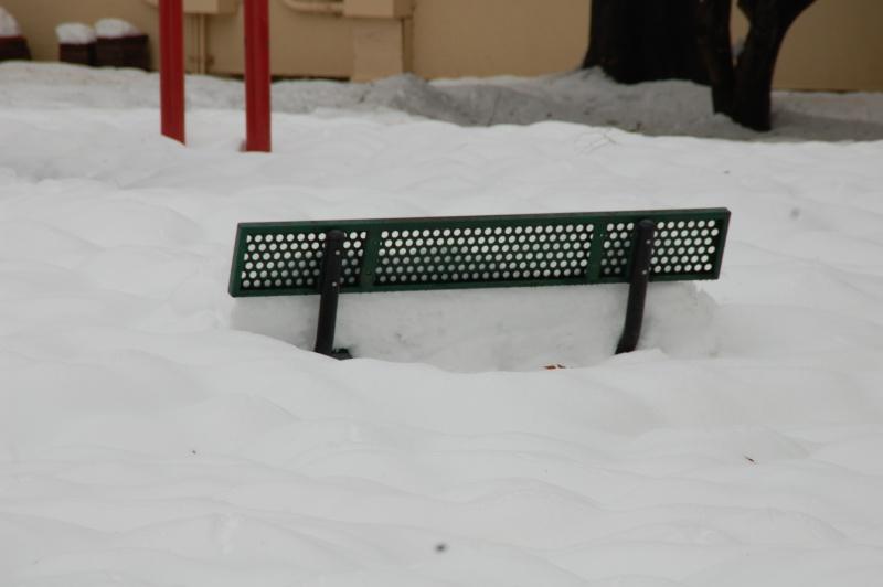 Wacky Weather Snowy_10