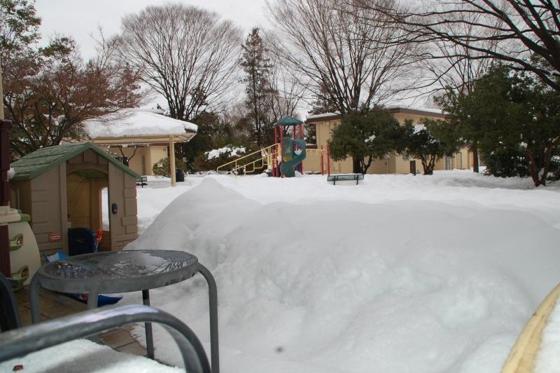 Wacky Weather Snowy_11