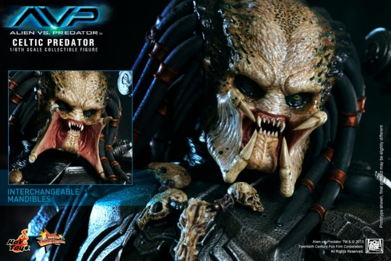 Hot Toy / ALIEN VS PREDATOR CELTIC PREDATOR 1/6 SCALE FIGURE  / 1 ou 2ème trimestre 2014 13-hot10