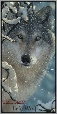 Éric Wolf