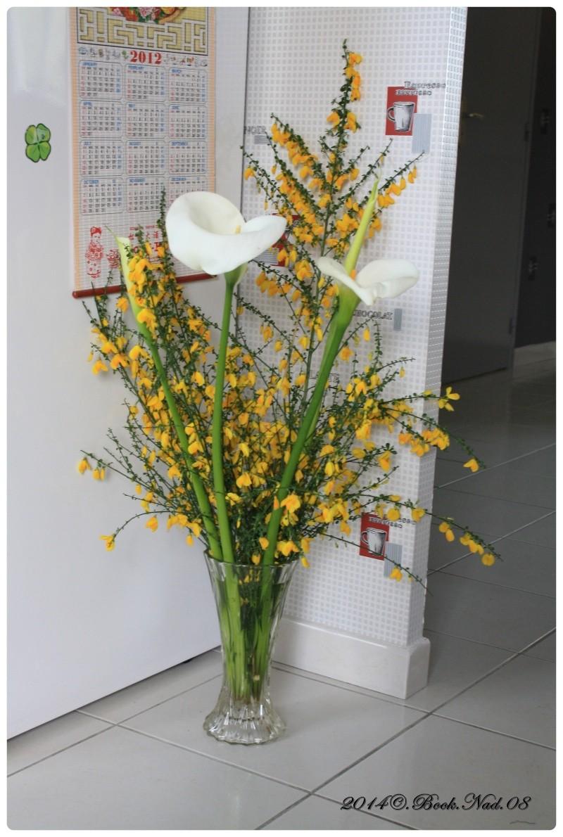 Mon monde avec mes fleurs - Page 2 Cadre416