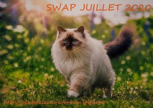 SWAP Calendrier de l'Avent 2020 - JUILLET Swap_j10