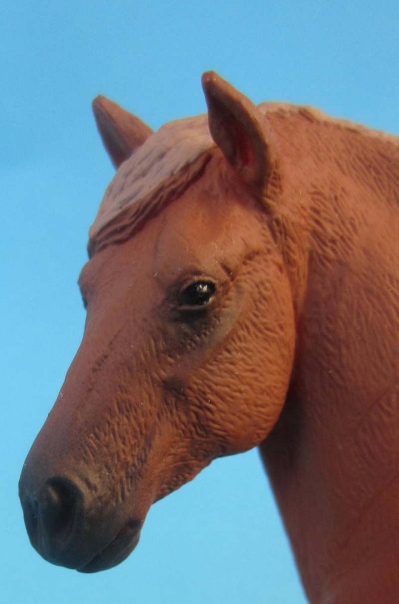 Mojo Suffolk Punch mare and foal 2014 are coming in Img_8720